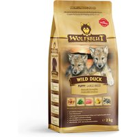 2 kg | Wolfsblut | Wild Duck Large Breed Puppy | Trockenfutter | Hund