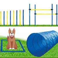 Dog Agility Set - groß -