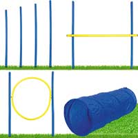 Dog Agility Set S/M